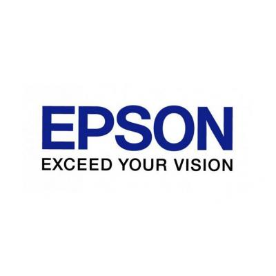 Epson C13S041725 grootformaat media