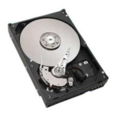 Seagate ST3400832AS-RFB interne harde schijven