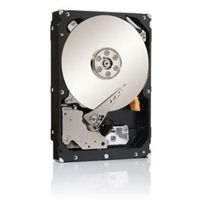 Seagate ST33000650NS-RFB interne harde schijf
