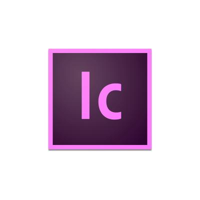 Adobe 65272676BA01A12 software licentie