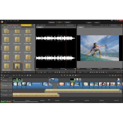 Corel ESDPNST20ULML videosoftware