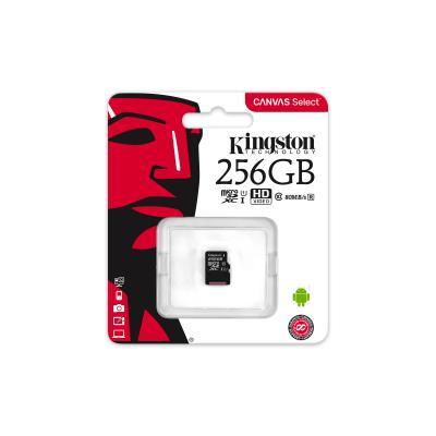 Kingston Technology SDCS/256GBSP flashgeheugen