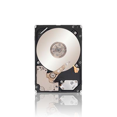 Seagate ST9300605SS-RFB interne harde schijven