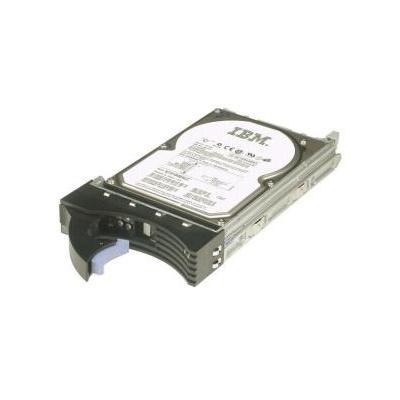 IBM 81Y9690 interne harde schijf