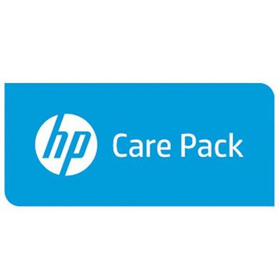 Hewlett Packard Enterprise U0BR7E IT support services