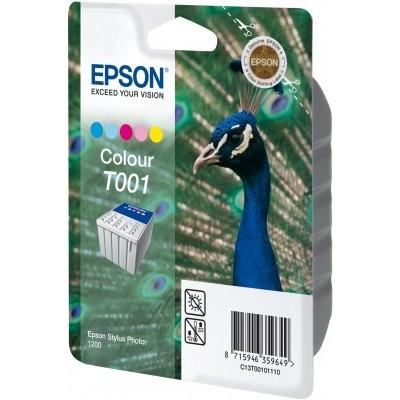 Epson C13T00101120 inktcartridges