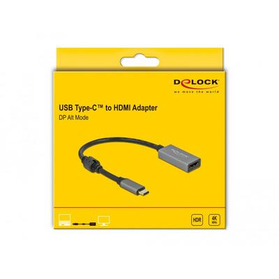 DeLOCK 66571 video kabel adapters