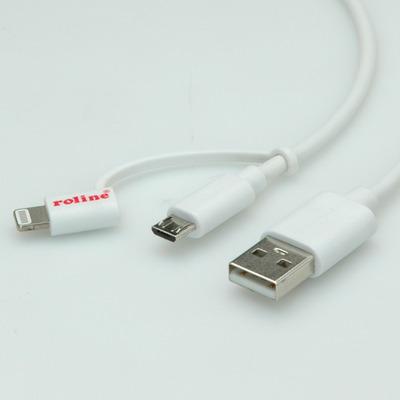 ROLINE 11.02.8325 USB-kabels
