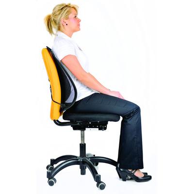 Fellowes 9191301 Rugsteunen voor stoel