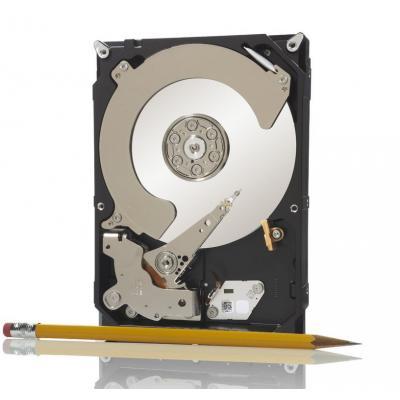 Seagate ST250DM000 interne harde schijf