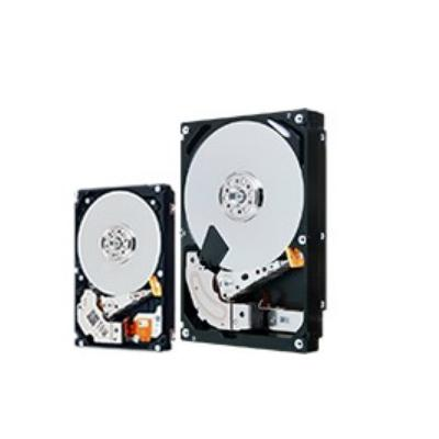 Toshiba HDEBF01GEA51 interne harde schijven