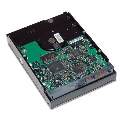 Hewlett Packard Enterprise GE262AA interne harde schijven
